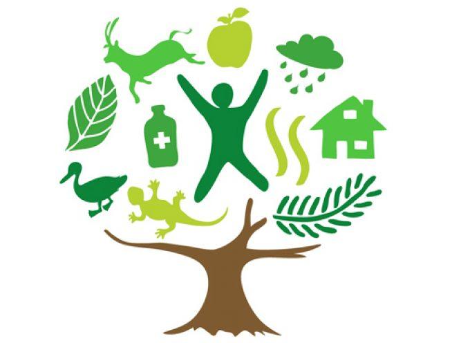 Durante el 2021 se crearán 700 empleos en la nueva Planta Verde de Puertollano