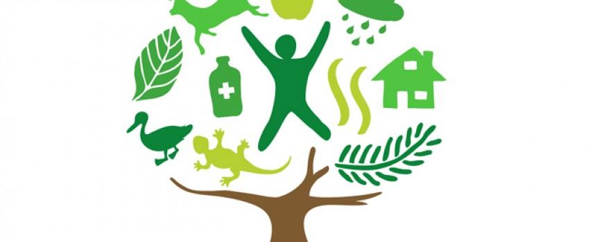Endesa colaborará en la formación de pymes rurales y en la implantación de soluciones de eCommerce