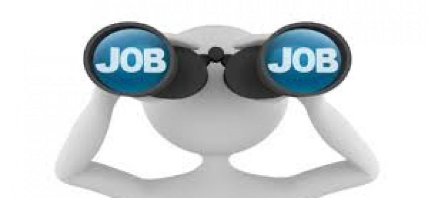Esquema para la búsqueda de empleo
