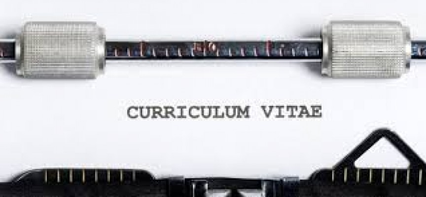 ¿Cómo personalizo mi archivo del curriculum?