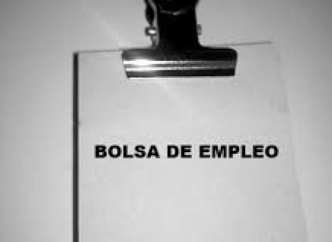 Málaga. 100 nuevas plazas para prácticas remuneradas en Alemania.