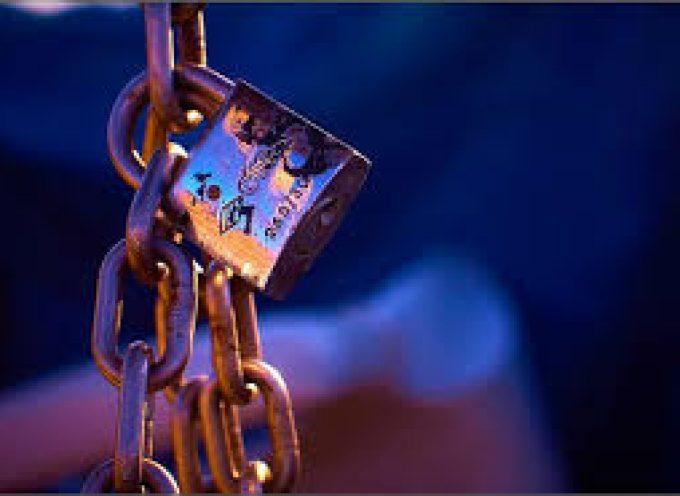 Nueva Guía de Privacidad en Internet, para que protejas tu identidad en la web