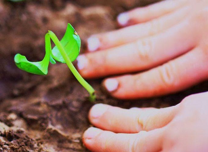 15 ideas para crear valor y aumentar tu productividad