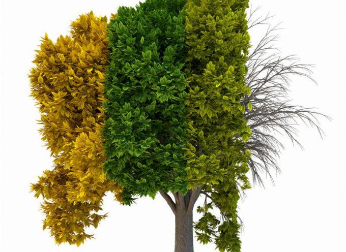 Ideas para hacer rentables las temporadas bajas de tu negocio