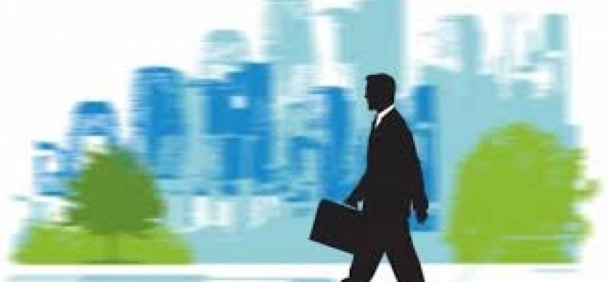 Perfiles profesionales que requieren las empresas para cubrir su demanda.