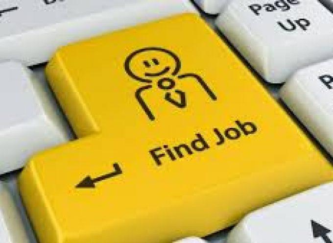 ¿Cuántas horas dedicas a buscar trabajo?