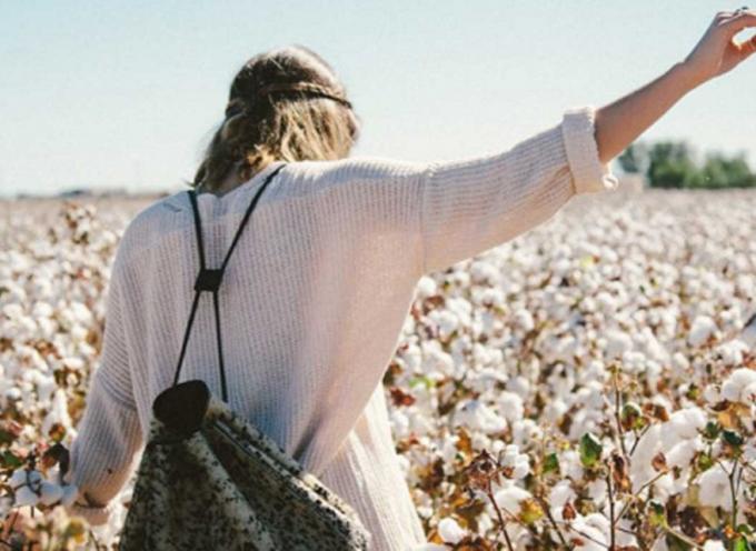 15 frases que te ayudarán a levantarte