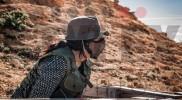 Almansa Combat 12