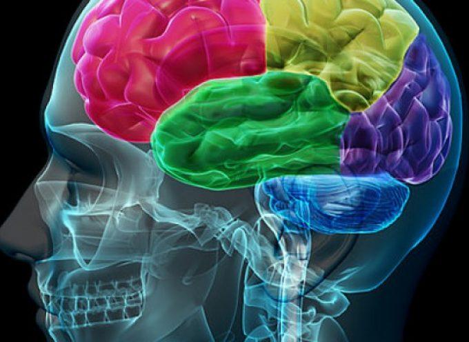 Identificada una nueva molécula 'multipotente' para el tratamiento de la enfermedad de Alzheimer