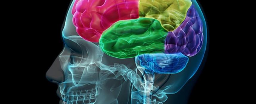 Síntomas Alzheimer: 10 Primeros que Deberías Conocer