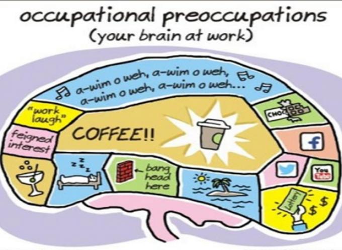 Cómo funciona el cerebro en el trabajo