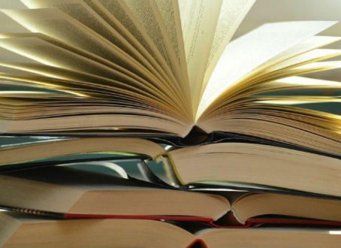5 libros sobre el placer de leer