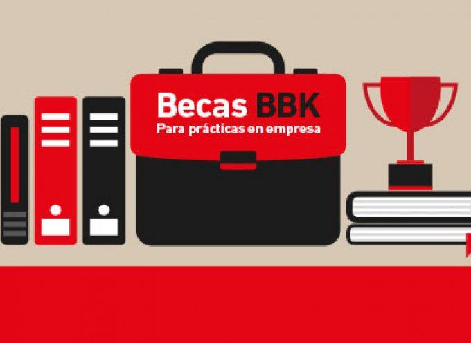 Programa de becas de formación y de prácticas laborales BBK