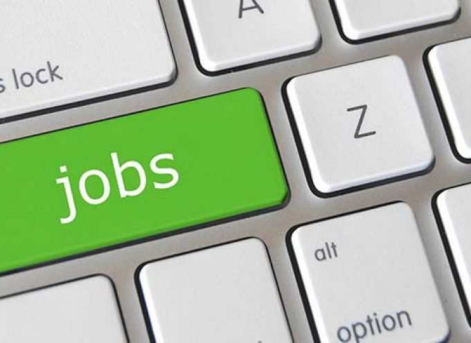 Guía para buscar trabajo de verano con éxito