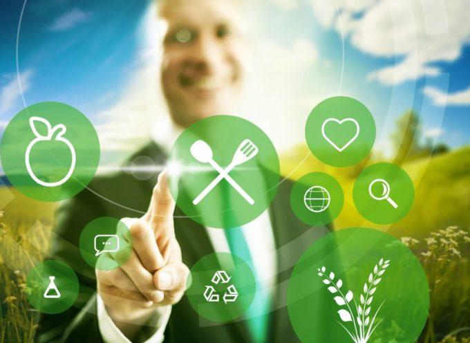 6 pasos para lograr la sostenibilidad empresarial