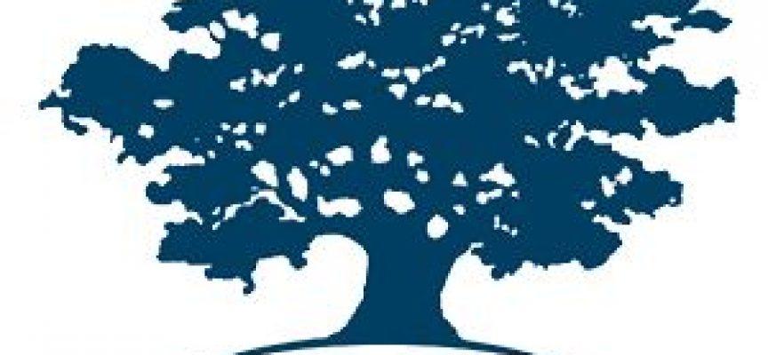La red de emprendedores sociales, Ashoka, es una de las seis mejores ONG del mundo
