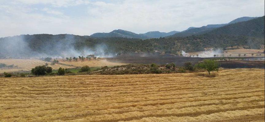 Una empresa transformará los purines de Peñarroya de Tastavins en fertilizante orgánico
