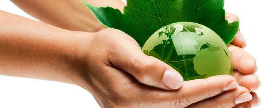 5 libros para educar la conciencia ecológica
