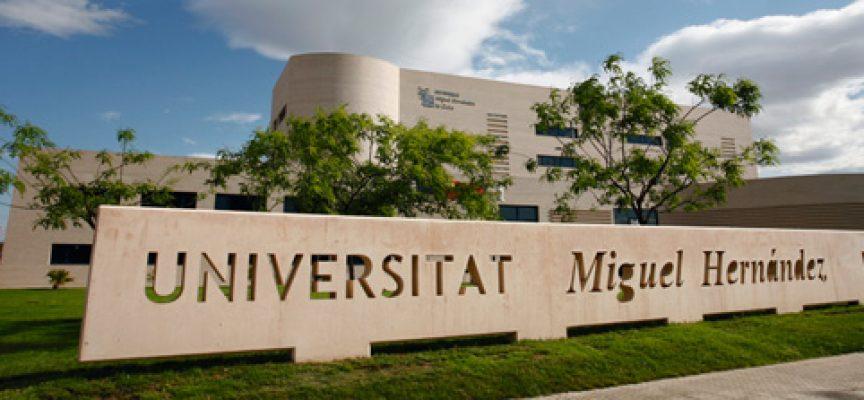 Concurso para emprendedores en la Universidad Miguel Hernández, de Elche (Alicante). Plazo 24/10/2016