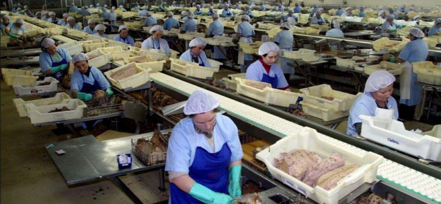 La red de fabricantes de Mercadona crean nuevos empleos