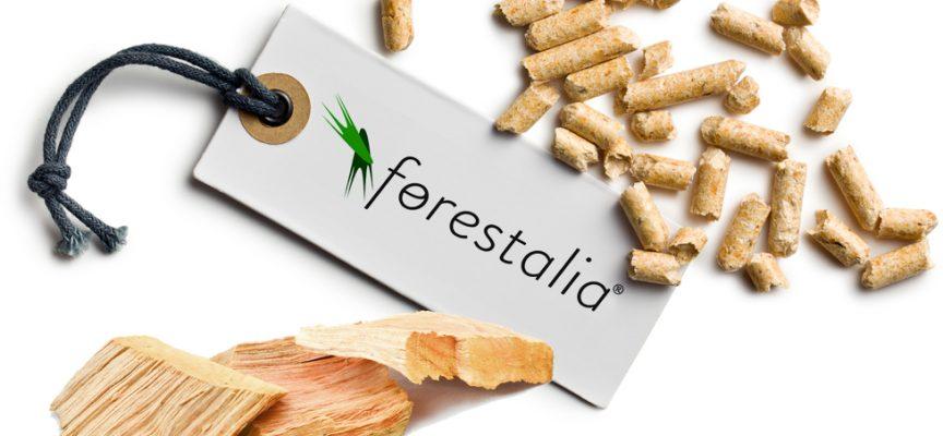 Forestalia creará más de 700 empleos en sus nuevas plantas de biomasa