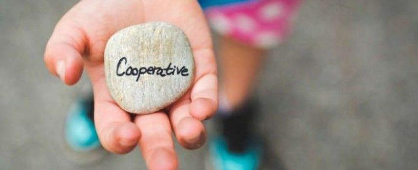 Las 3 fuerzas fundamentales que hacen que un proyecto cooperativo sea sostenible