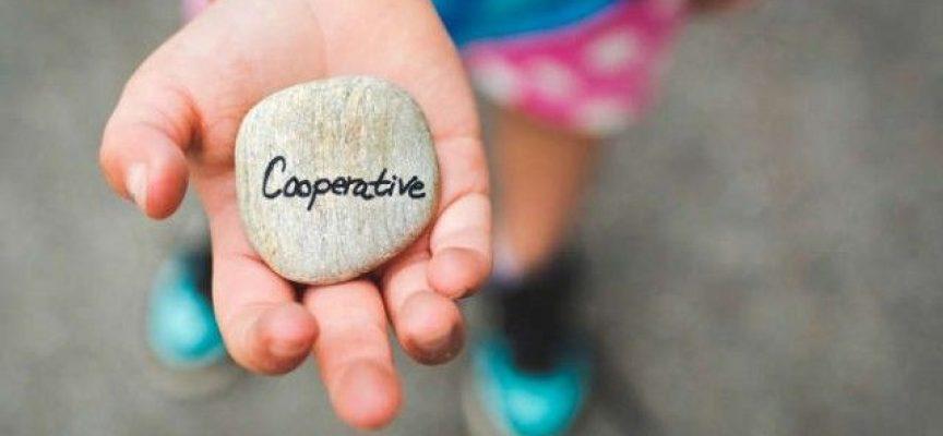 5 experiencias sobre trabajo cooperativo