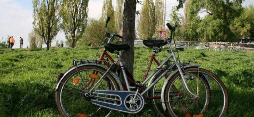 Opciones para trabajar en verano en Alemania