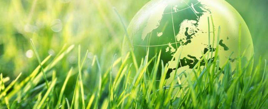 2020, el año de la biodiversidad