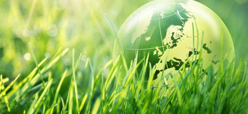 Convocatoria de concesión de ayudas de la Fundación Biodiversidad 2017 – Plazo 30/06/2017
