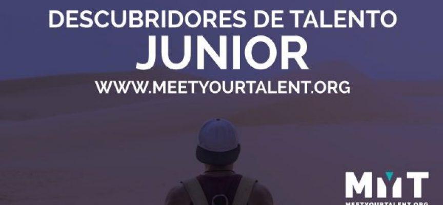 Selección de perfiles tecnológicos en el Programa Talent Discovery