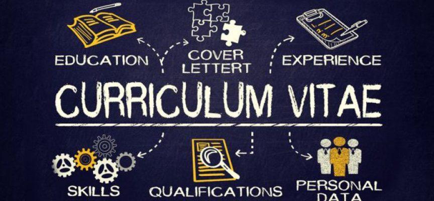 ¿Qué competencias debes destacar en tu curriculum?