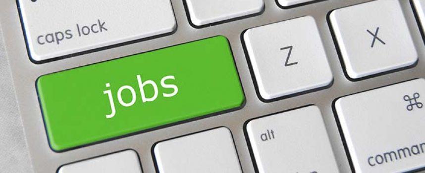 Cómo buscar tu primer empleo tras finalizar la carrera