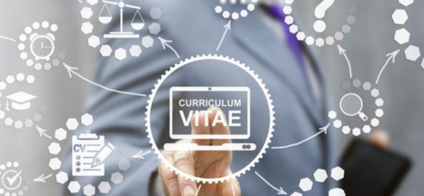 Creatividad en el currículum