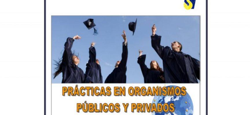 Guía para los interesados en realizar prácticas en organismos internacionales
