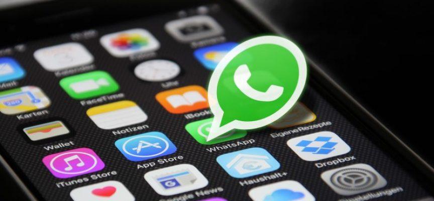 Mejora resultados y la comunicación entre tus trabajadores con WhatsApp