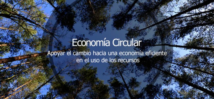 Economía circular: la alternativa sostenible al modelo económico lineal
