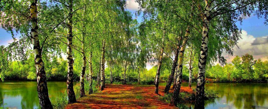 Programa de Caminos Naturales, un verano al aire libre
