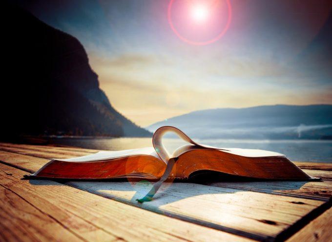 Cinco libros para emprendedores que cambiarán tu verano