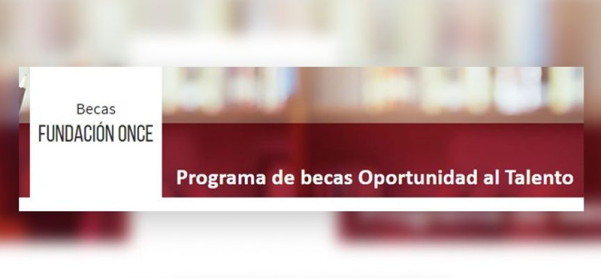 Programa de becas Prácticas Fundación ONCE-CRUE // Plazo 15 de diciembre 2017
