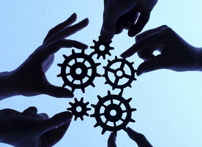 ¿Qué diferencias hay entre asociación, fundación y federación?