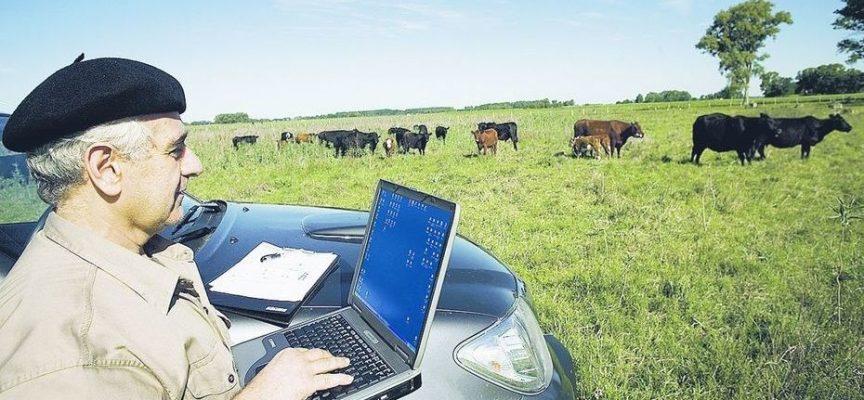 Tecnología y ganadería, hacia un desarrollo sostenible
