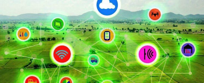 Digitalización y 'Big Data' en la agricultura