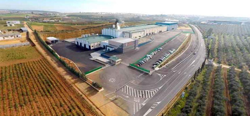 Una planta cárnica creará 100 empleos en El Viso del Alcor
