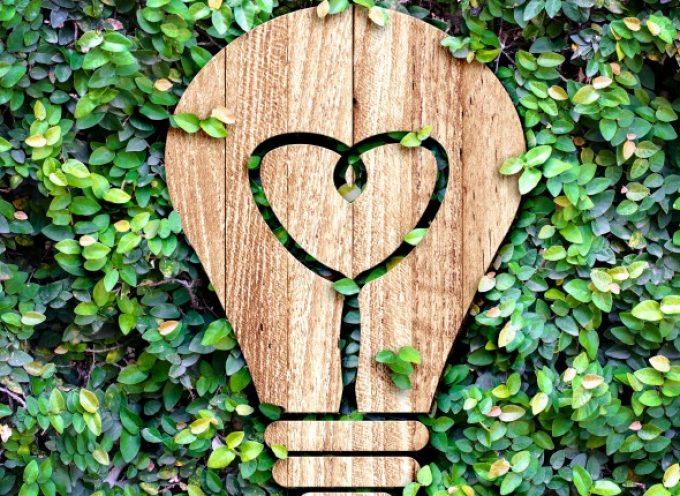 Objetivos de Desarrollo Sostenible: de la ciencia a la acción