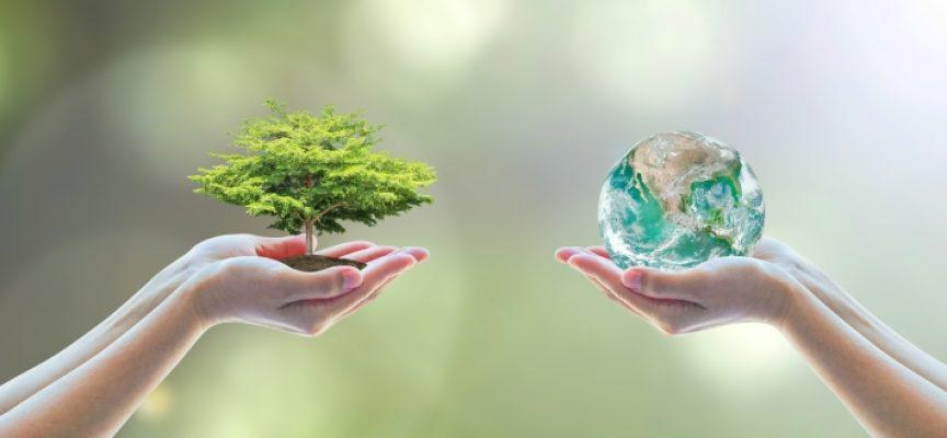 Las nuevas profesiones agrícolas que salvarán el mundo