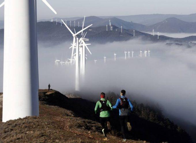 Convocatoria de concesión de ayudas de la Fundación Biodiversidad, en régimen de concurrencia competitiva, para la realización de proyectos en materia de adaptación al cambio climático 2017 | Plazo: 31/01/2018