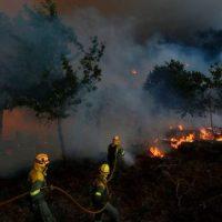 Abierta solicitudes para campaña 2021 Prevención de Incendios del SARGA / Plazo 30/11/2020