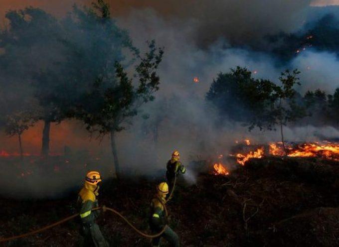 Valencia contratará 744 brigadistas para la prevención de incendios