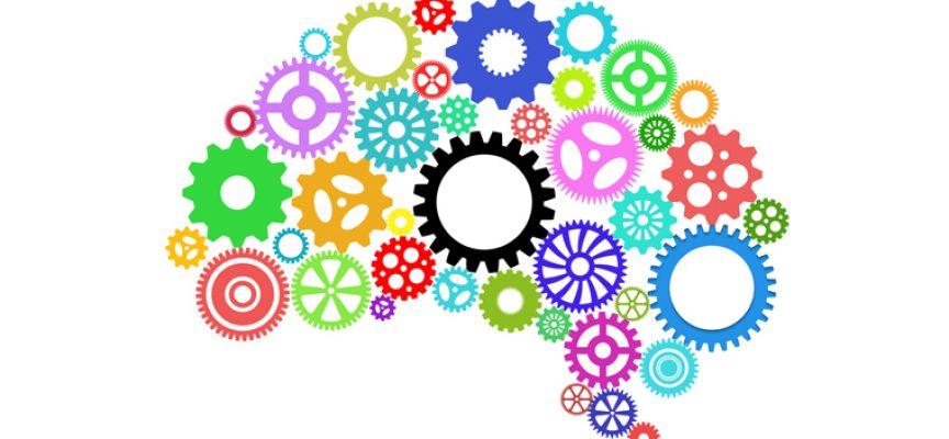 Región de Murcia participa en un proyecto europeo para identificar las soft skills más valoradas por los empleadores